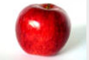 Schermafbeelding_2010-02-25_om_14.39.58.png