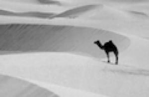 Schermafbeelding_2011-05-19_om_15.09.33.png