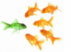 Schermafbeelding_2012-11-13_om_18.59.46.png