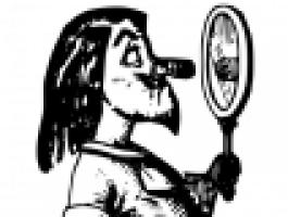 spiegel2.png