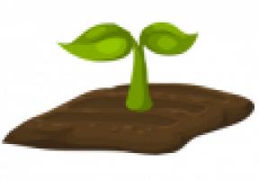 planten.png