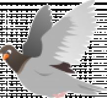 squab-151212_1280.png