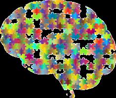 hersenpan bestaande uit puzzelstukken