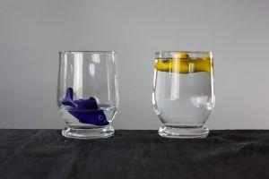 glas met drijvende vis en glas met zinkende vis