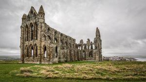 ruïne van een kasteel