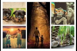 Fotocollage van mensen en dieren