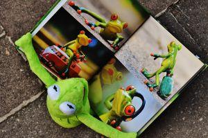 kikker met een prentenboek vast