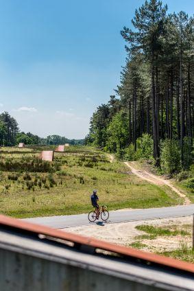 ecoduct in provinciaal  groendomein Hoge Mouw