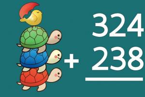Drie schildpadden op elkaar. Daarnaast staat een oefening cijferend optellen tot 1000