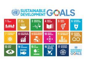 SDG's overzicht