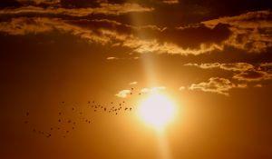 zon in gouden lucht met enkele wolken