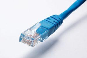 Blauwe netwerkkabel