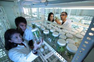 kinderen in een labo