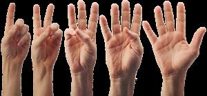 Verschillende handen tonen vingers van 1 tot 5