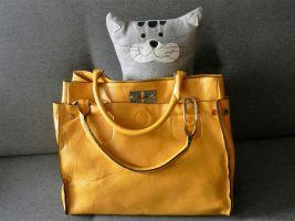 kat in een zak