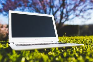 Laptop in het gras