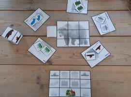 Foto van het materiaal bij het spel