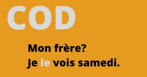 Franse zin