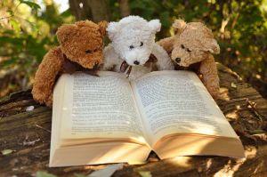 teddyberen lezen in boek