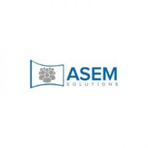 Logo asem-solutions.com
