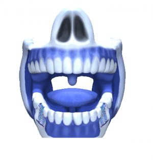 Afbeelding van de binnenkant van de mond