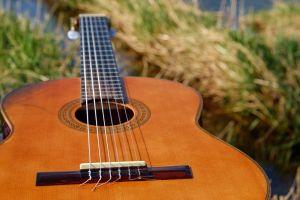 gitaar in het gras