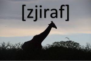 giraf + [zjiraf]