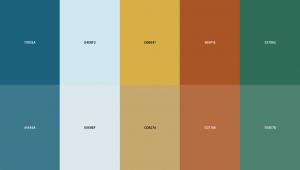 Kleurenpalet van Coolors.co