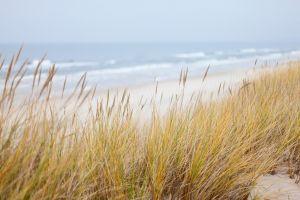 duin strand