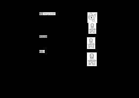 Voorbeeld uit: Sjabloon CONTRACTWERK 5A.docx