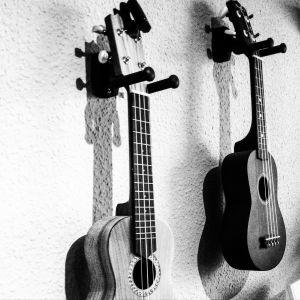 gitaar en ukelele