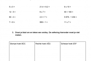 Voorbeeld uit: neptoets wiskunde.pdf