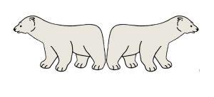 twee ijsberen
