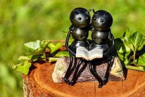 kunstwerk van twee mieren die in een boek kijken