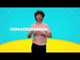 Voorbeeld van video 'Array'