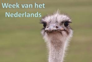 struisvogel langs 'Week van het Nederlands'