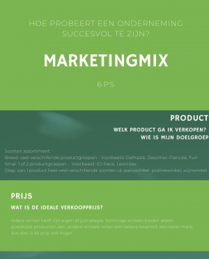 Voorbeeld uit infographic over marketingmix