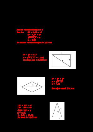 Voorbeeld uit: REM Pythagoras_oplossing.pdf
