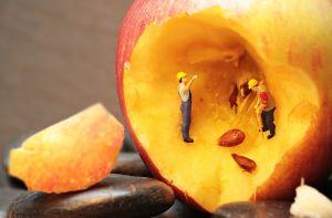 mannetjes die de kern uit een stuk fruit halen