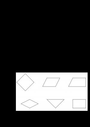 Voorbeeld uit: OEFENTOETS WISKUNDE 4.docx
