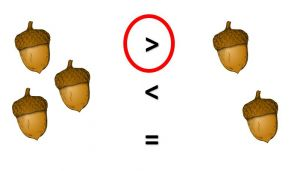 Vergelijking hoeveelheid eikels