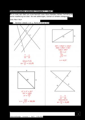Voorbeeld uit: OPL_Vakantieblaadjes wiskunde.pdf