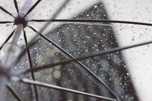 paraplu met regendruppels op