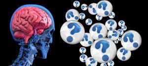 hersenen met vraagtekens rond
