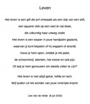 Voorbeeld uit: vers lies van de velde   leven    gemaakt op 8 juli 2020.odt