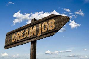 pijl met dreamjob