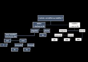 schematische voorstelling gebruik Frans lidwoord