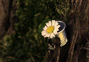vingerhoed met een bloem erin