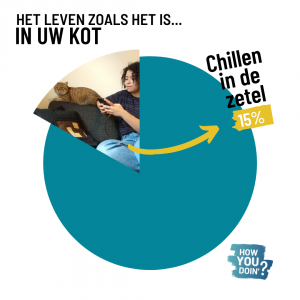 taartdiagram met percentage chillen in de zetel