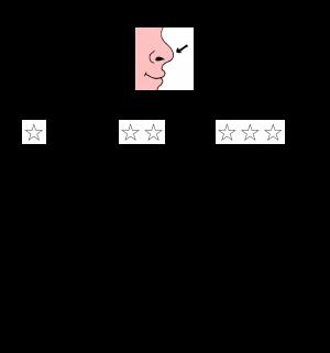 Voorbeeld uit: RALFI-lezen_De neus.pdf